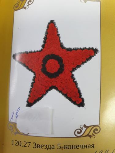 120.27 Звезда 5-конечная